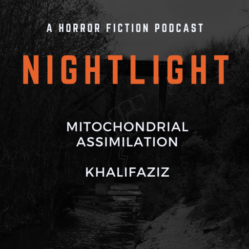 422: Mitochondrial Assimilation